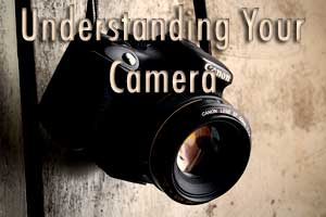 Understand how ISO, Shutter Speed, and Aperture work in your DSLR camera